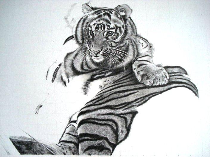 Save_Tigers_WIP1