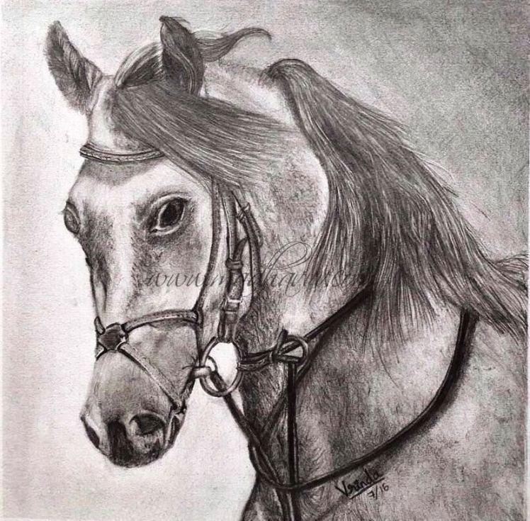 Vrinda Horse