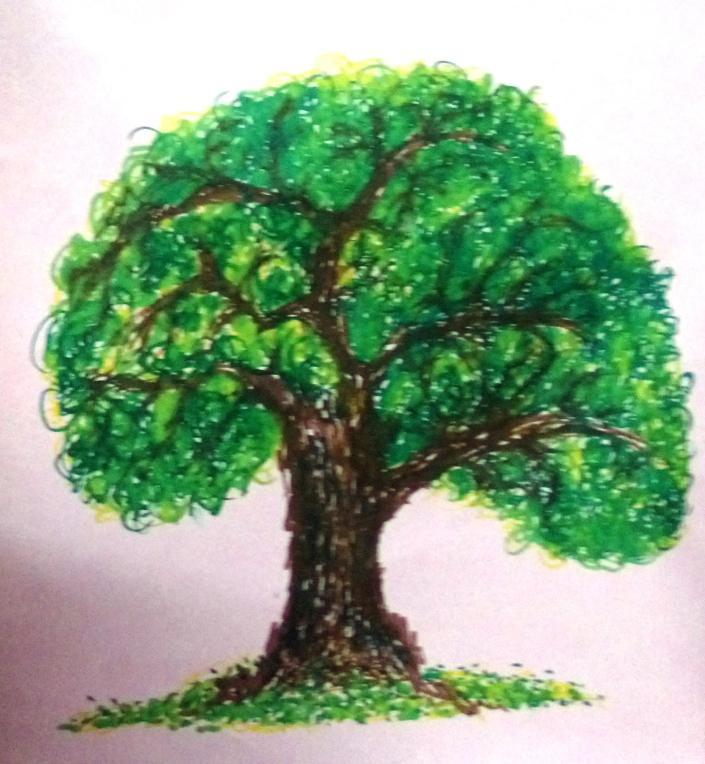 Sketch Tree
